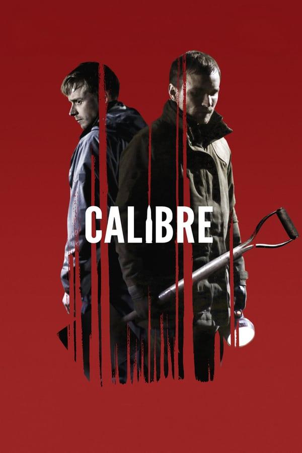 კალიბრი / Calibre