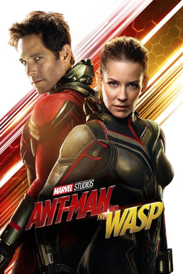 ენთმენი და კრაზანა / Ant-Man and the Wasp