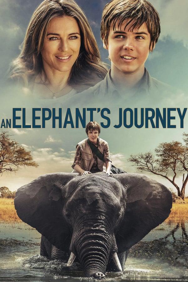 სპილოს თავგადასავალი / An Elephant's Journey
