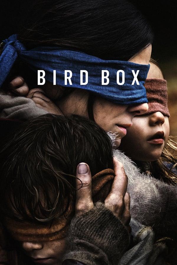 ჩიტის ყუთი / Bird Box
