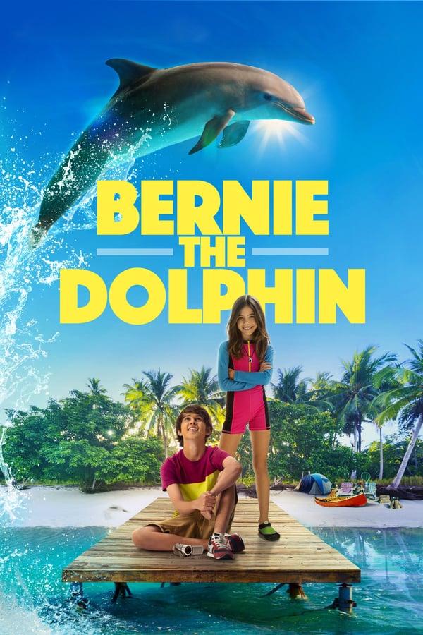 დელფინი ბერნი / Bernie the Dolphin