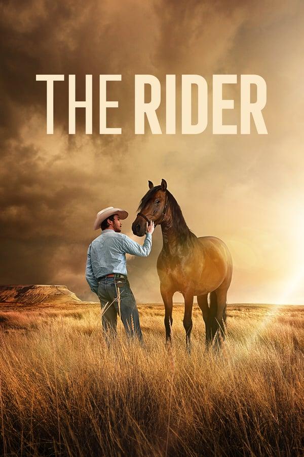 მხედარი / The Rider