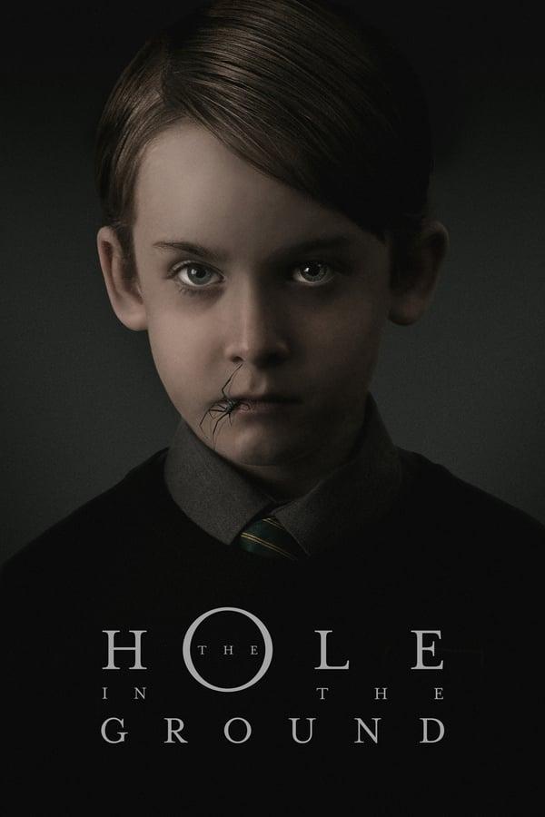 ხვრელი მიწაში / The Hole in the Ground