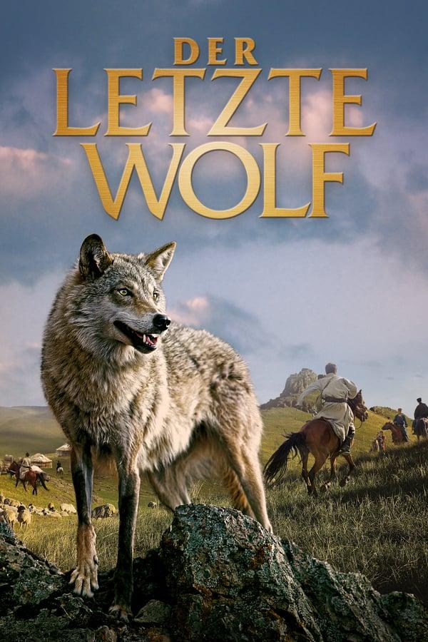 მგელი ტოტემი / Wolf totem