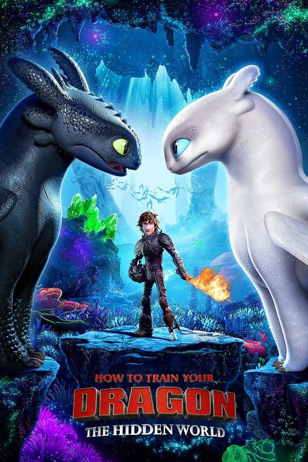 როგორ მოვათვინიეროთ დრაკონი / How to Train Your Dragon