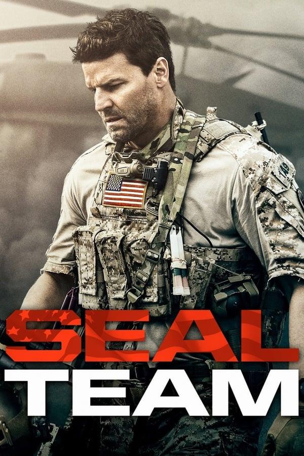 ზღვის ლომები / Seal Team
