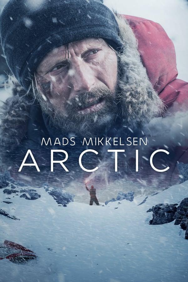არქტიკა / Arctic