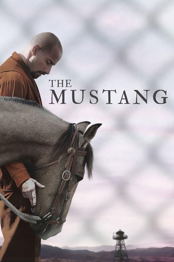 მუსტანგი / The Mustang