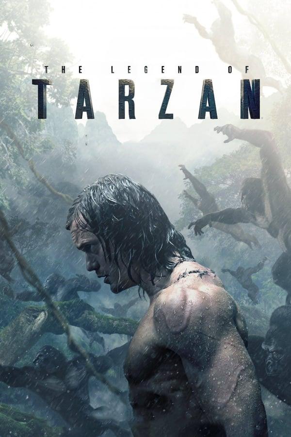 ლეგენდა ტარზანზე / The Legend of Tarzan