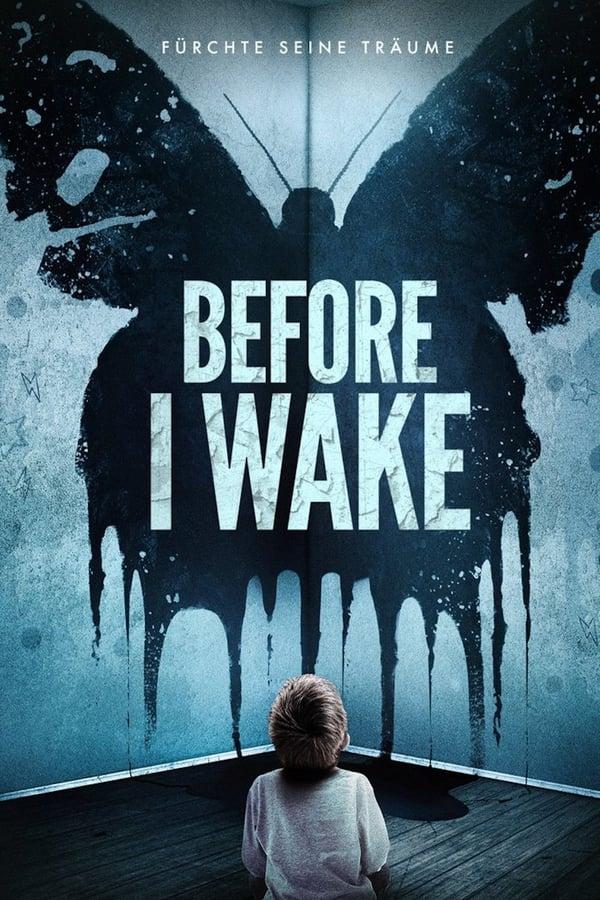 სანამ გავიღვიძებ / Before I Wake
