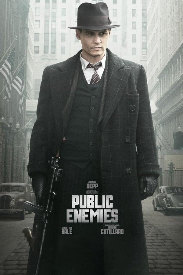 საზოგადოებისთვის საშიშნი / Public Enemies