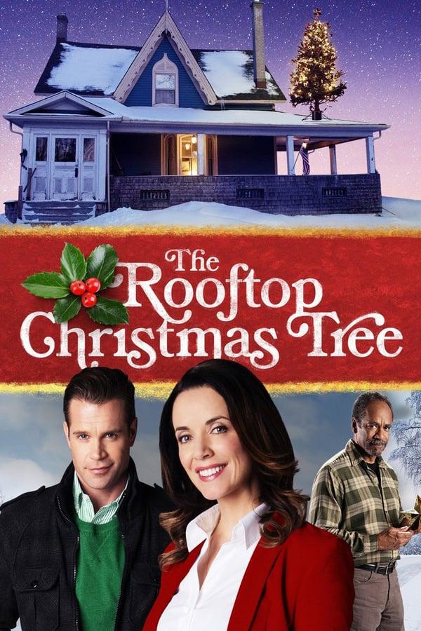 ნაძვის ხე სახურავზე / The Rooftop Christmas Tree